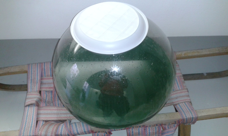 Barrel of green kilju