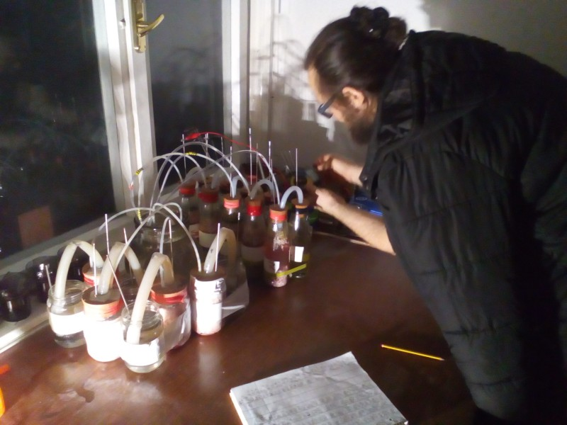Zoran working with fuel cells